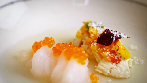 Edward Lee persimmon vinegar fluke crudo photo