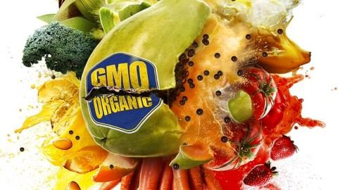 foodevolution
