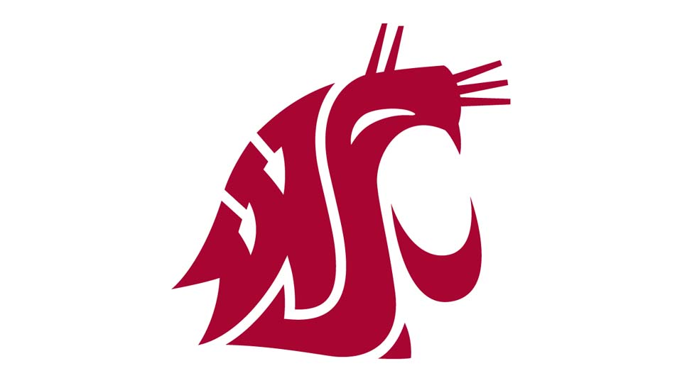 Washington State Cougars Offense (2002) - Mike Price