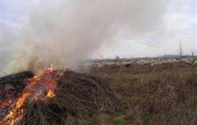 incendi-in-campania-vietato-bruciare-sterpaglie-41972-300x199 (Custom)