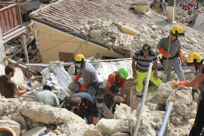 Terremoto-forestale-7-650x434
