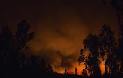 epa05735973 View of a wild fire at the Pumanque locality, O'Higgins region, 130 kms south of Santiago, Chile, on 20 January 2017. 119 wild fires where registered in different regions of Chile, with more than 39,000 hectares affected.  EPA/HANS SCOTT