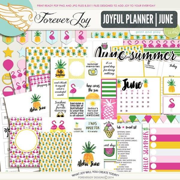 Video Walk Through Joyful Planner June Edition