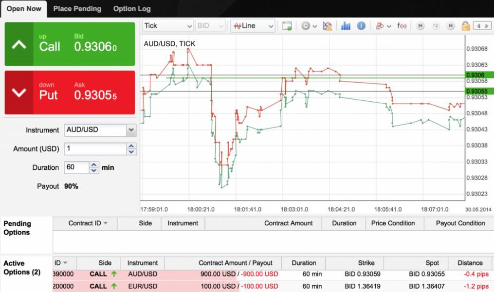 How does binary options work
