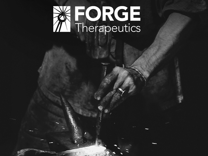 Forge Therapeutics to Present at the 2018 Needham  Company