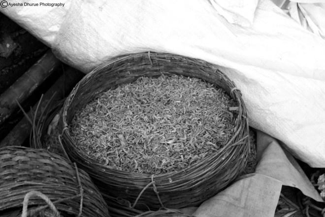 ayesha dhurue photography mumbai worli for the public eye village  (26)