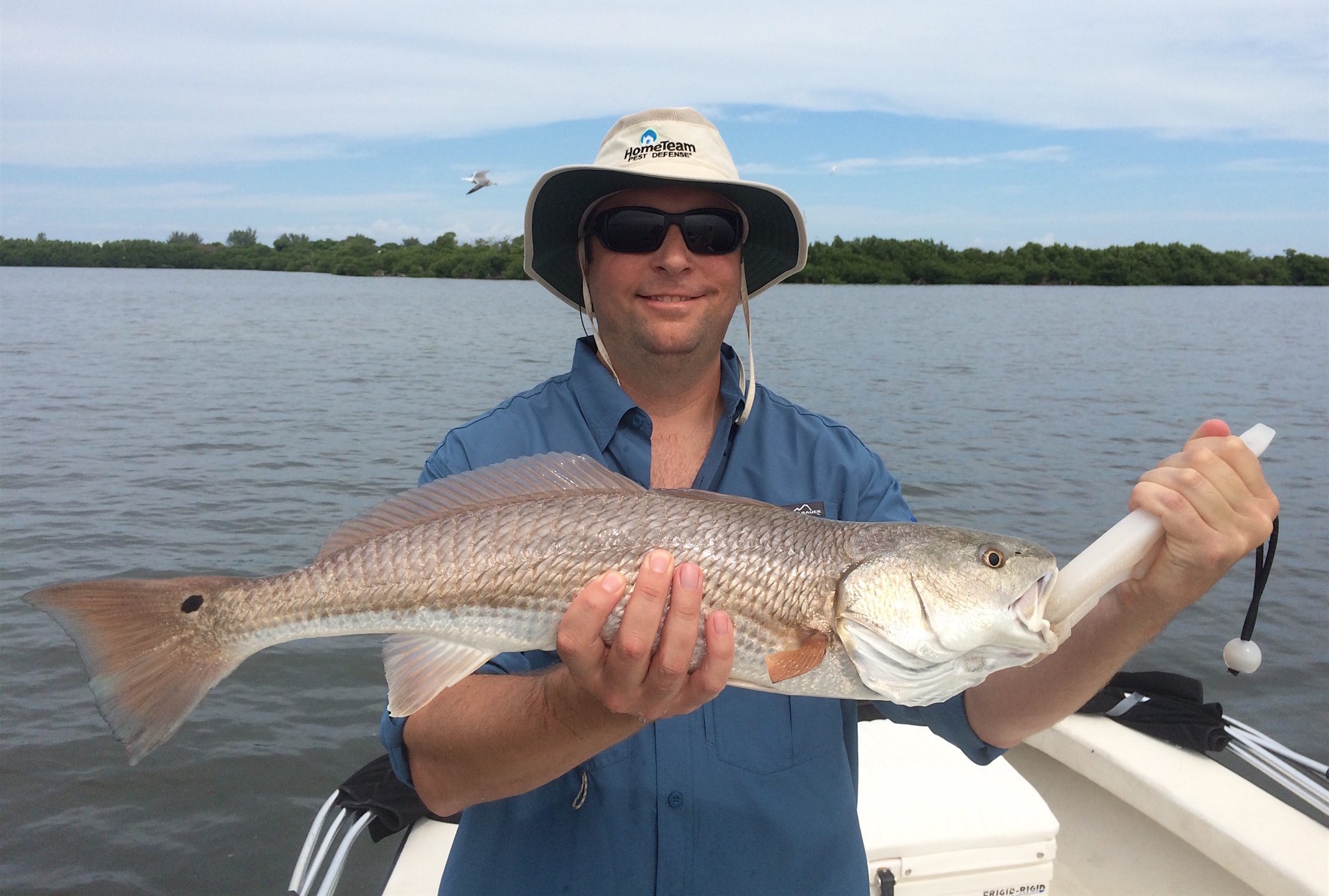 Fort myers fishing redfish august 12 2016 fort myers for Fishing in fort myers