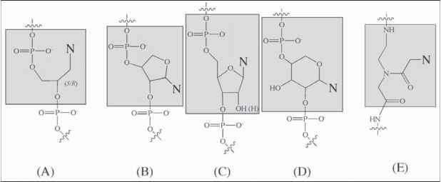 RNA Polymerization or Self Condensation of RNA Monomers - Astrobiology
