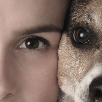 Hund_Mensch