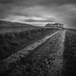 El camino (Miguel Cabezas)