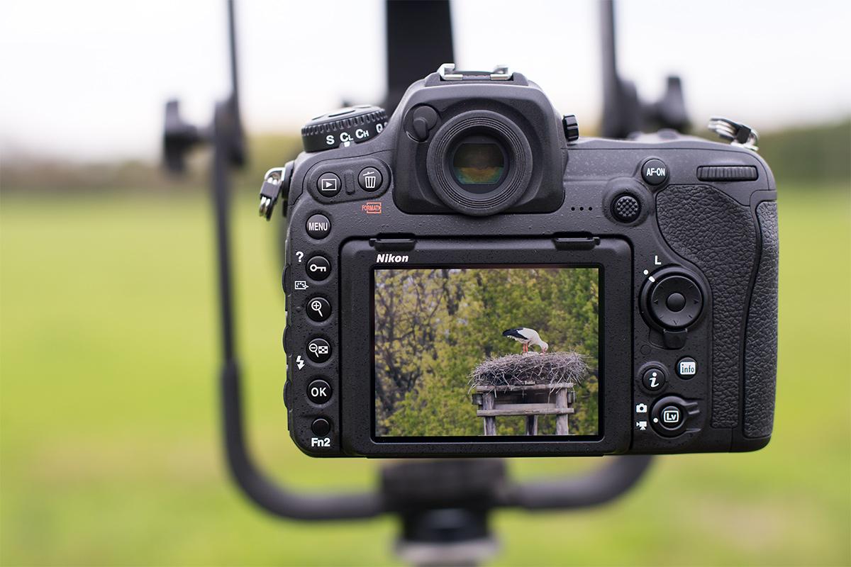 Nikon D500 auf Stativ