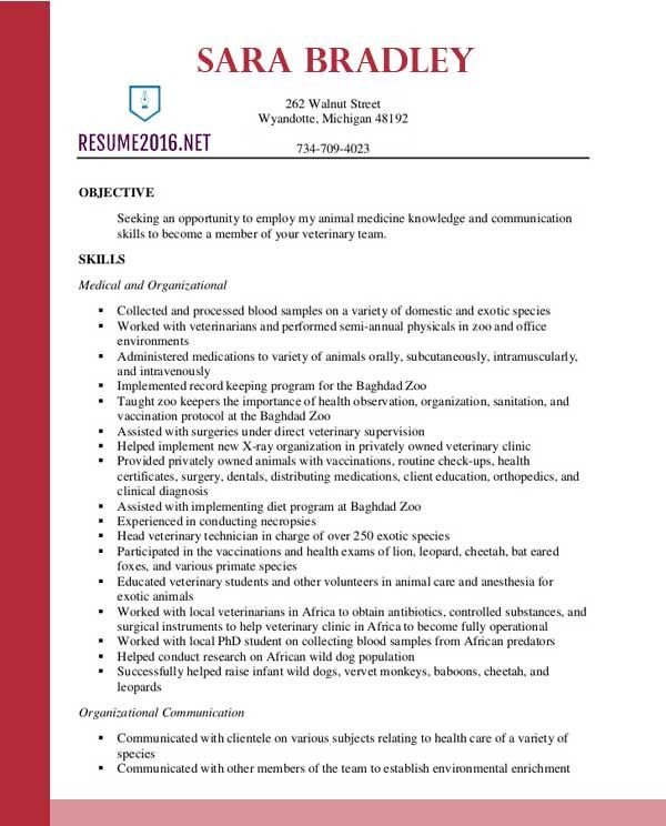 Best Resume Format 2016 Fotolip Rich image and wallpaper