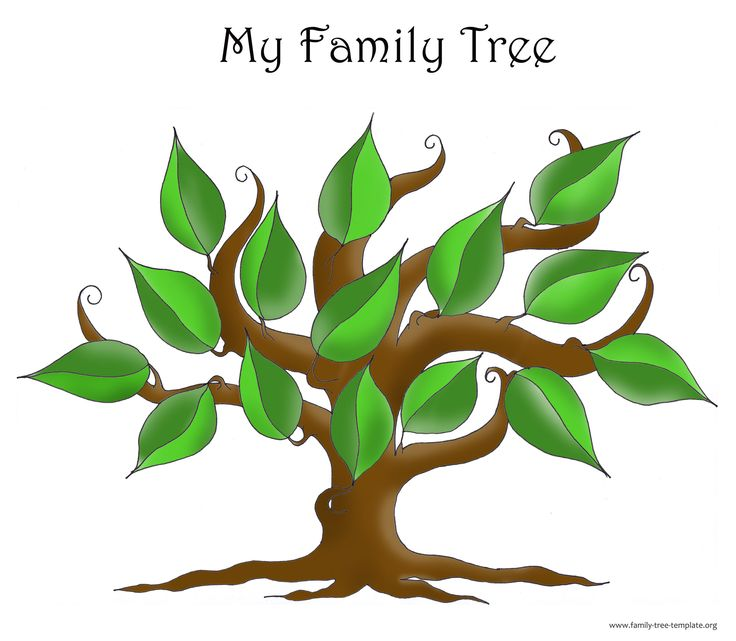 Family Tree Template Fotolip Rich image and wallpaper - family tree diagram templates