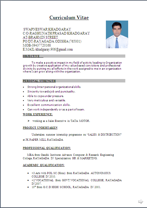 Resume Format For Freshers Computer Engineers Free Download Pdf – Free Sample of Resume in Word Format