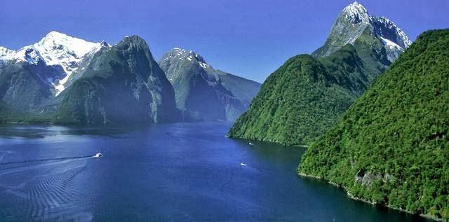Bing Animated Wallpaper Parque Nacional Fiordland Nueva Zelanda
