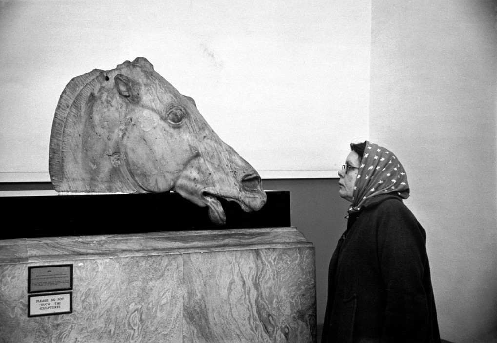 GB. London. 1951. British Museum. Head of one of 4 horses from Chariot of Selene, Goddess of the Moon, which was originally in the East pediment of the Parthenon in Athens.