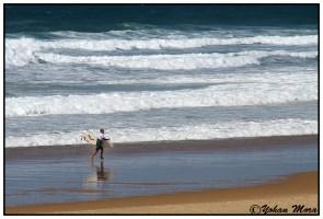 surf2016-68