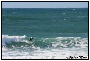 surf2016-88