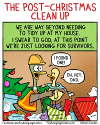 chtristmas clean up