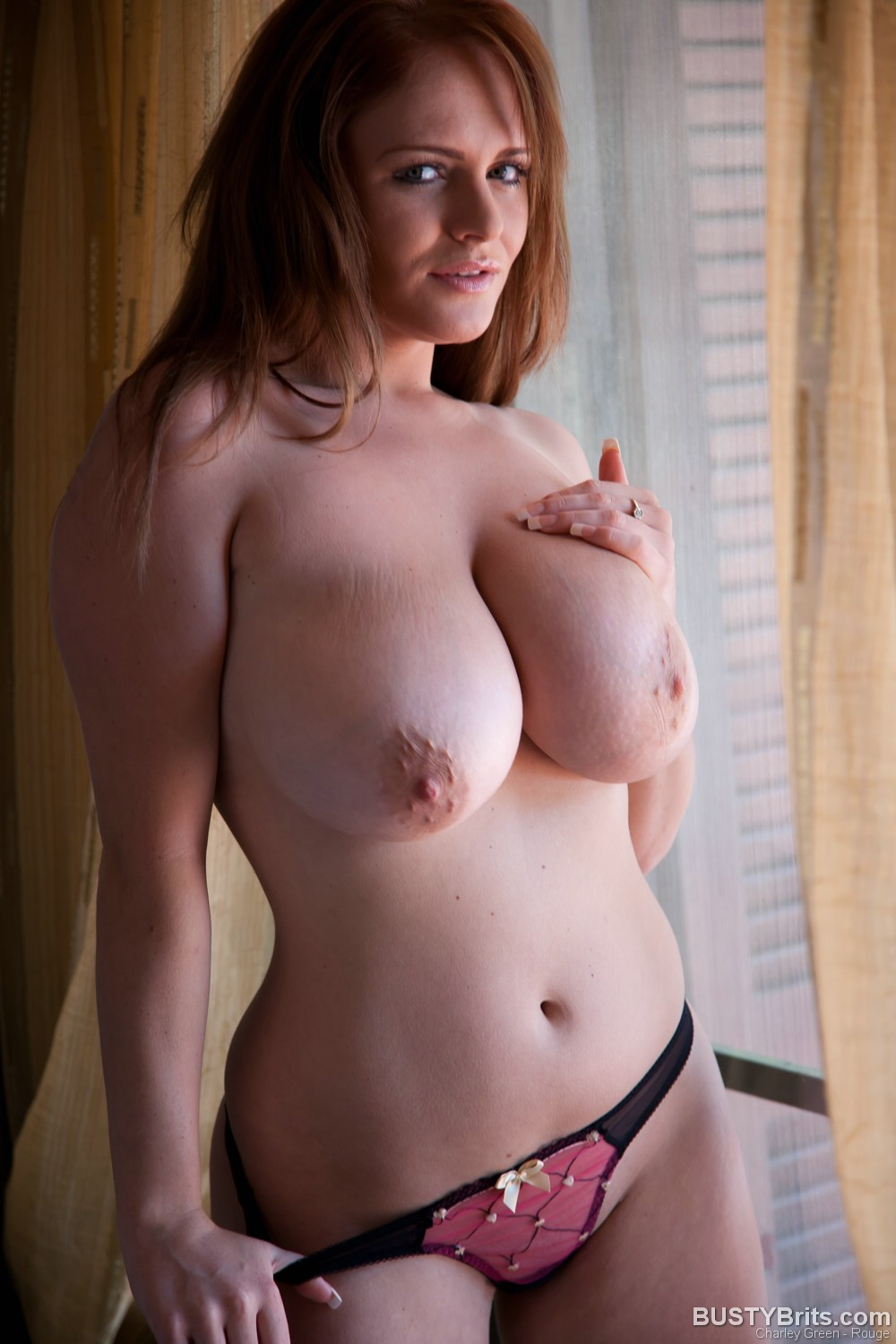 busty charley green pregnant