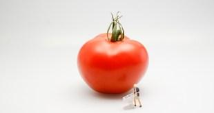 tomato-546958_1280