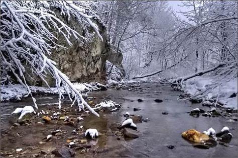 snowcreek.jpg