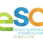 Master ESA Angers