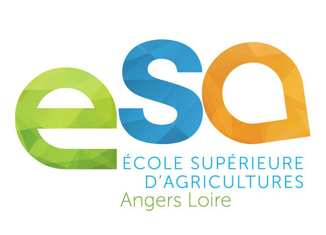 ESA Angers : les inscriptions au Master Vintage ont commencé