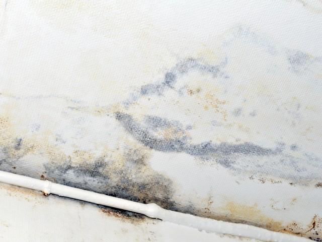 Humidité au plafond Que faire ? - Que Faire En Cas D Humidite Dans Une Maison