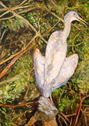 Blue Heron in Marsh
