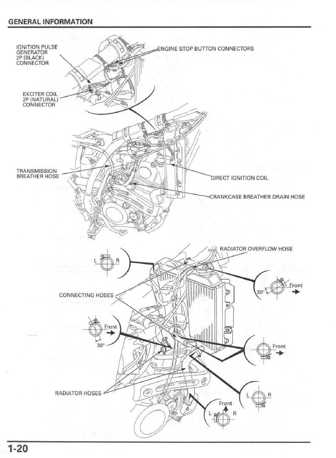 schema cablage for honda crf150r