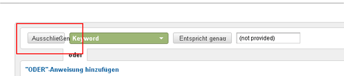 Google Analytics Screenshot - (not provided) vom Filter ausschließen
