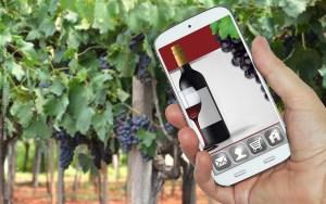 vino-digitale-2015