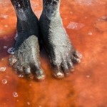 Deadly Lake Natron