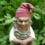 Argentina gnome caught on camera
