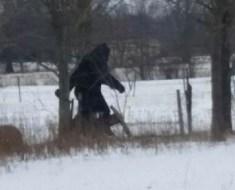 Bigfoot in Ohio