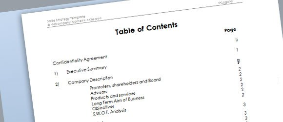 Sales Strategy Template for Microsoft Word - examples of word documents