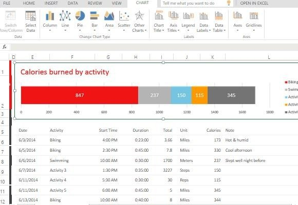 Exercise Activity Tracker Template For Excel