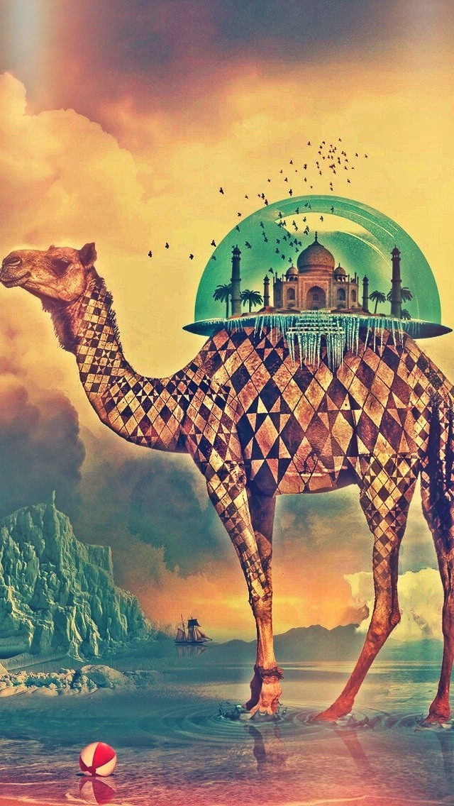 Indian Sweet Girl Wallpaper Camel And Middle East Architecture Wallpaper Free Iphone