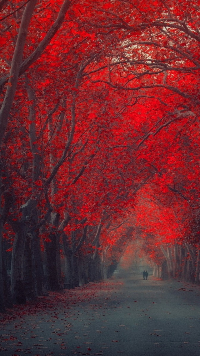 3d Wallpaper Parallax Free Red Trees Iphone 6 6 Plus And Iphone 5 4 Wallpapers