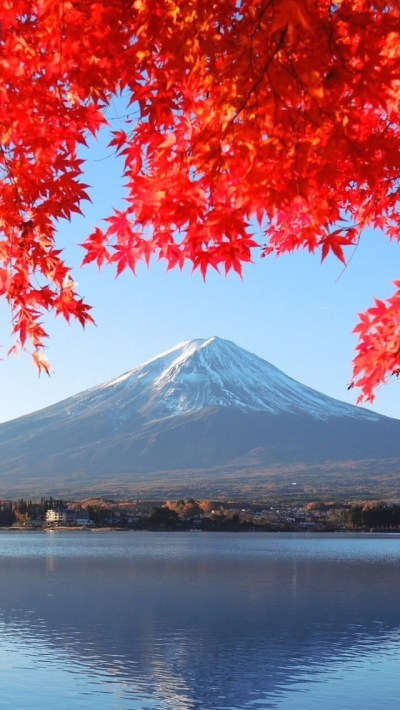 Fuji Mountain Autumn iPhone 6 / 6 Plus and iPhone 5/4 Wallpapers