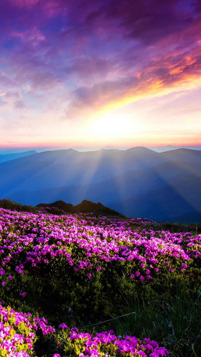3d Parallax Background Wallpaper Free Download Blue Mountains Beautiful Flowers Iphone 6 6 Plus And