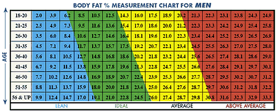 body fat chart women s