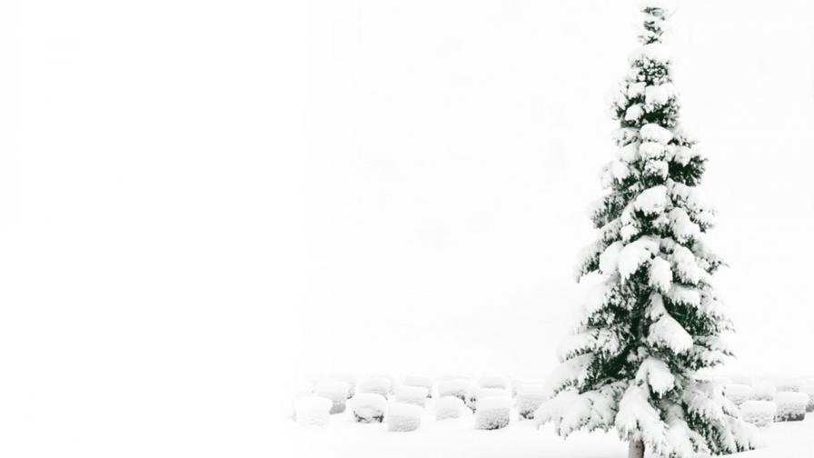 Snowy Christmas Tree - Wallpaper - FreeChristmasWallpapersnet