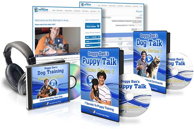 Doggy Dan's online dog trainer review - does the course work
