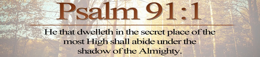Protection Psalm 91 - Freedom in the Word Ministries - the shadow of the almighty ministry