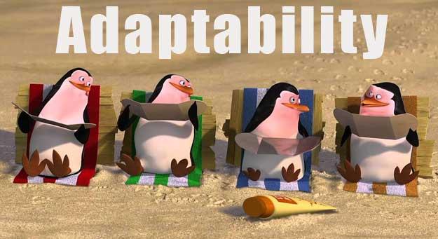 15-06-adaptability-penguins