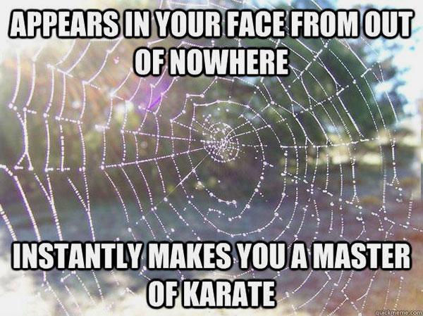 16-03-spider-web-meme-karate-master