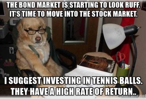 16-08-financial-advice-dog-bonds-tennis-balls