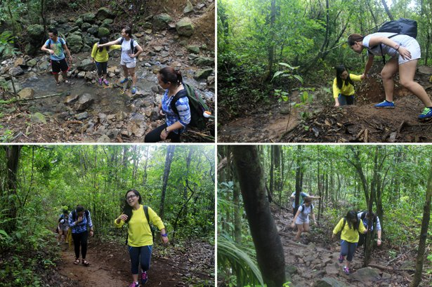 mount palay-palay trail